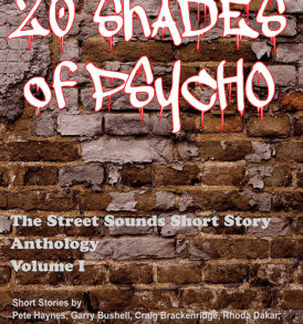 20_Shades_cover